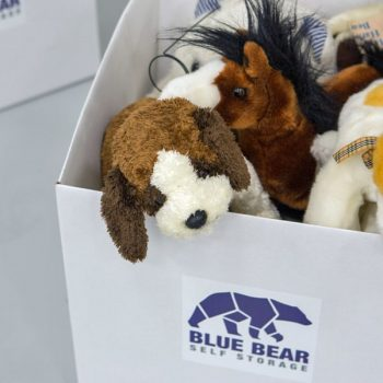 box stored with blue bear